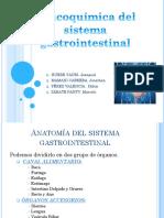 Fisicoquímica del sistema gastrointestinal.pptx