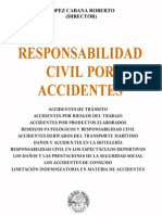 Responsabilidad Civil Por Accidentes - Roberto Lopez Cabana