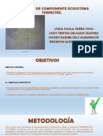 Componente Ecosistema Terrestre-1