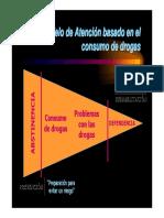 Modelo de Atención Basado en El Riesgo y Daño