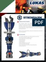 e100_strongarm1