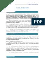 P0001 File IncasDesarrolloTeorico
