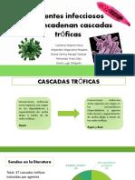 Cascadas tróficas inducidas por agentes infecciosos