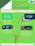 WhatsApp Business está disponível para o iOS oficialmente