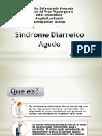 Sindrome Diarreico Agudo Nuevo 111