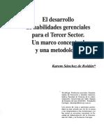 El Desarrollo de Habilidades Gerenciales para El Tercer Sector.pdf