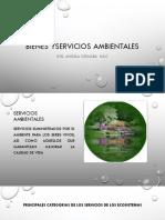 BIENES Y SERVICIOS AMBIENTALES.pdf