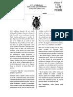 GUÍA LITERARIA   LA METAMORFOSIS.docx