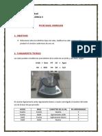 Trabajo Practico 5 - Hidrolisis.docx