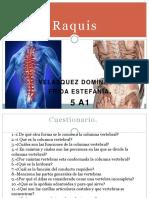 5A1 Raquis.pdf