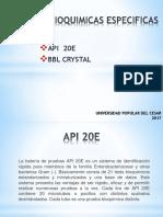 Pruebas Bioquimicas Especificas (1)