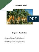 apresentação da cultura do milho,-1.pptx