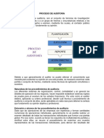PROCESO DE AUDITORIA.docx