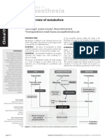 An Overview of Metabolism