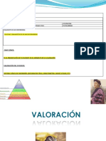 INDUCCIÓN PLACE Y PAE pdf 2.pdf