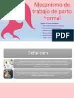15. Mecanismo de trabajo de parto normal.pptx