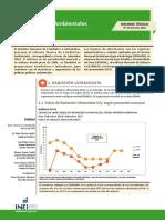 10-informe-tecnico-n10_estadisticas-ambientales-set2018.pdf