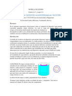 BOTELLA DE LEYDEN.docx