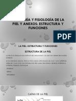 Anatomía y Fisiología de La Piel y Anexos