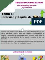 Formulación de proyectos de inversión privados.pdf