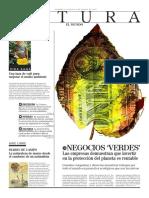 RAE NEGOCIOS VERDES (2).pdf