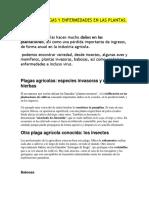 DISTINTAS PLAGAS Y ENFERMEDADES EN LAS PLANTAS.docx