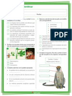 Editable Los Estimulos 1