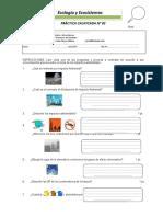 Práctica Nº 02 Ecologia y Ecosistemas.docx