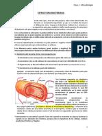 Transcrito clase 2 de microbiología