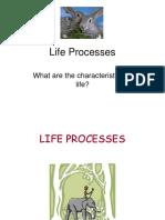 Life Processes Ppt (1)