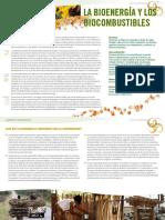 fao bioenergia facil.pdf