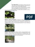 BIOTOPOS DE GUATEMALA.docx