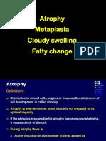 Atrophy,Metaplasia, Cloudy Swelling 13.6.2014 C