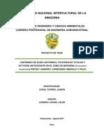 proyecto de tesis (marañon)-JUNIOR CORAL1.docx