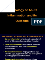 Morphology of Acute Inflammation