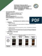 determinacion-de-cuerpos-cetonicos.docx