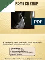 SX. CRUP.pdf