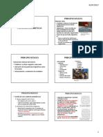 PARTICULAS MAGNETICAS 2017A.pdf