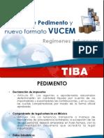 llenado-de-pedimento.pdf