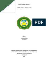 LP CKR IGD.doc