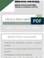 Guia de Practica Salud Publica I 2019 I