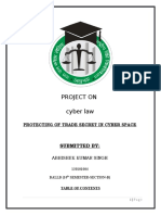 CYBER LAW F.D..docx