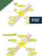 1_explozia_stelara (2).docx
