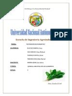 INFORME 14-PIGMENTOS.pdf