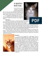Crotchety Kitty? Behavior Changes of Age