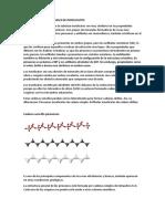 CARACTERÍSTICAS GENERALES DE INOSILICATOS.docx