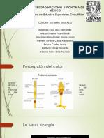 Diseño y Modelos DIgitales