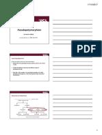 4(c) copy.pdf