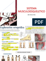 Semiologia de Sistema Musculoesqueletico PEDIA