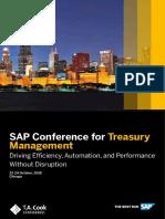SAP Treasury Solutions1